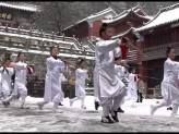 Motions of the Tao/Fung Loy Kok Taoist Tai Chi & Opening Dao [English] 2012/2009 Tao